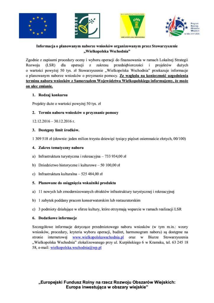 Informacja_o_naborze_duze_projekty stowarzyszenie wielkopolska wschodnia