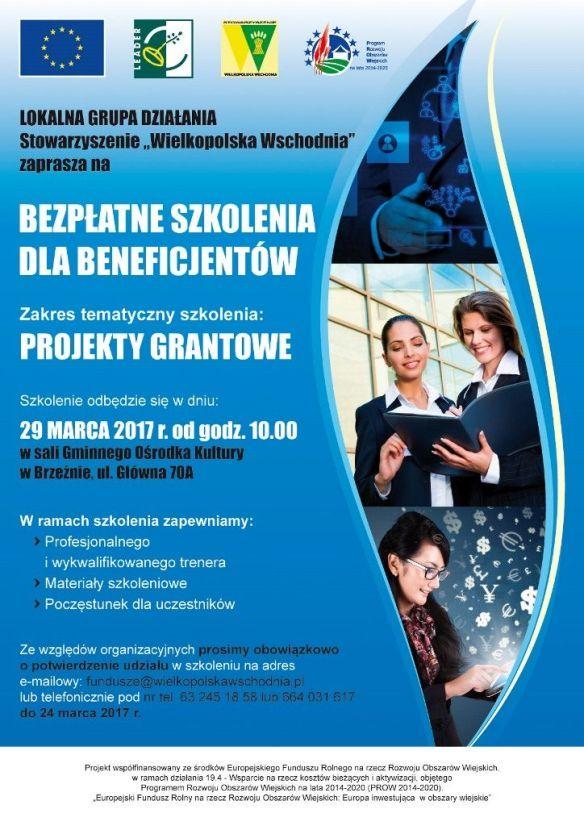Szkolenie dotyczące projektów grantowych, więcej informacji stowarzyszenie Wielkopolska Wschodnia.