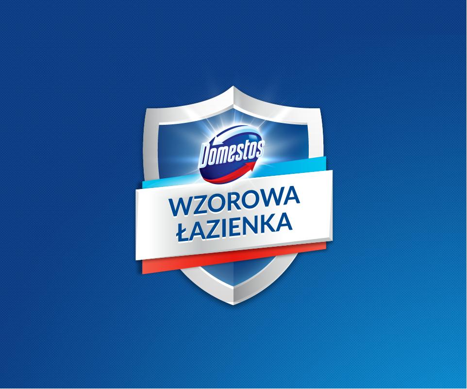 """Logo programu Domstos """"WZOROWA ŁAZIENKA"""""""