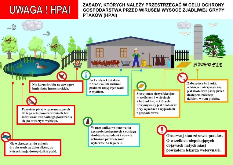 Ulotka określająca zasad, których należy przestrzegać w celu ochrony gospodarstwa przed wirusem wysoce zjadliwej grypy ptaków (HPAI).